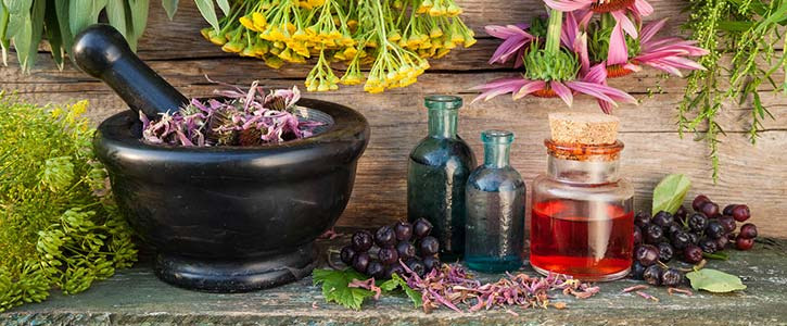 Herbal medicine in Washington DC and Maryland by Naturopathic Doctor Randy Gastwirt.