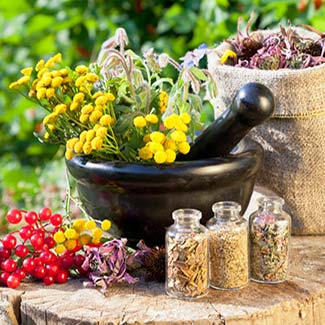 Herbal Medicine Washington DC | Botanical Medicine | Dr