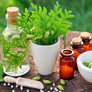 Herbal Medicine in Washington DC and Maryland from Naturopathic Doctor Gastwirt.
